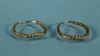 Canaanite Gold Earrings
