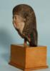 Egyptian Painted Limestone Female Bust